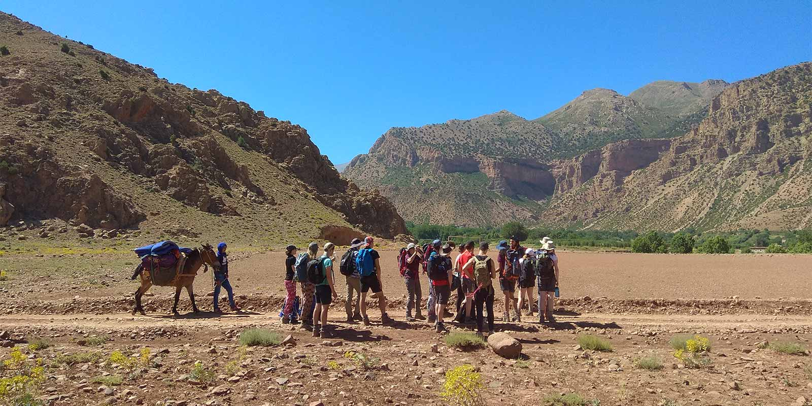 School group with mules and muleteer in Ait Bouguemez Valley in Atlas Mountains of Morocco