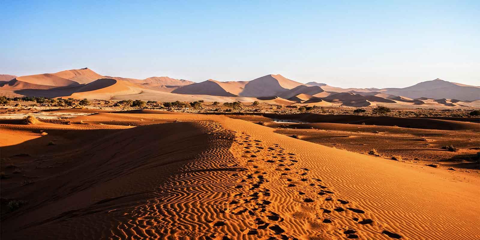 Footprints on sand dune in Namib desert