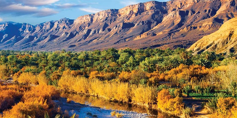 Lush Moroccan valley with arid mountainous backdrop