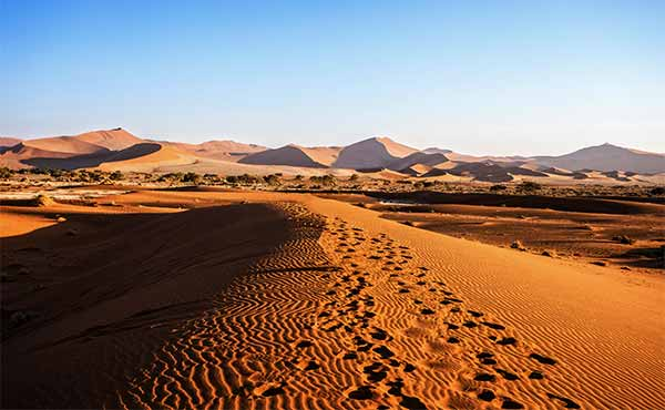 Towering Namib sand dunes with footprints