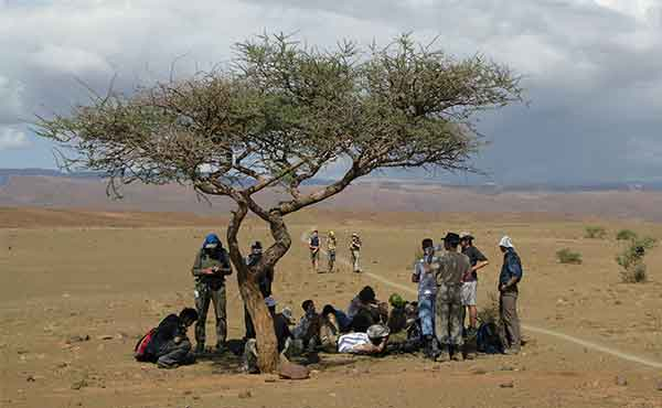 Group of students resting under a shady tree in Africa desert